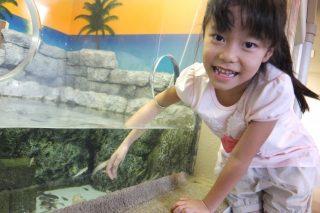 富山水族館