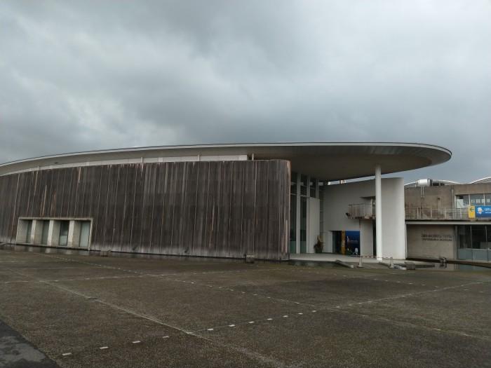 ホタルイカミュージアム